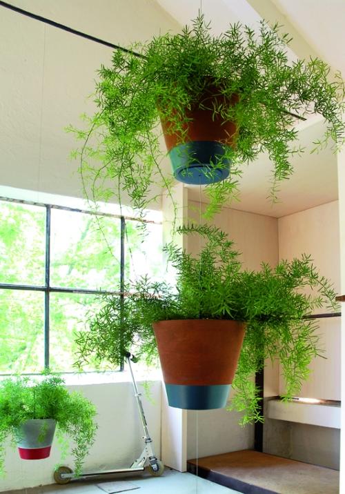 Biombos Naturales: Family Pot Suspension by Teracrea