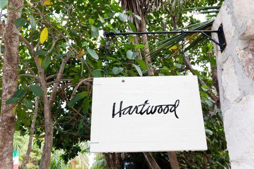 The Selby presenta el Restaurante Hartwood (Mejico) by Todd Selby